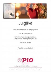 julgava_ljus_zebra