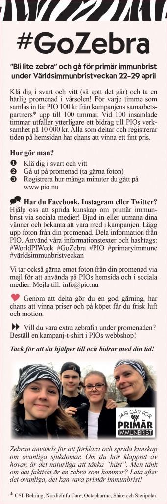 GoZebra_info