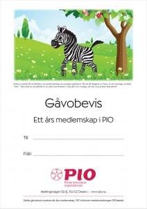 GAVA_medlemskap